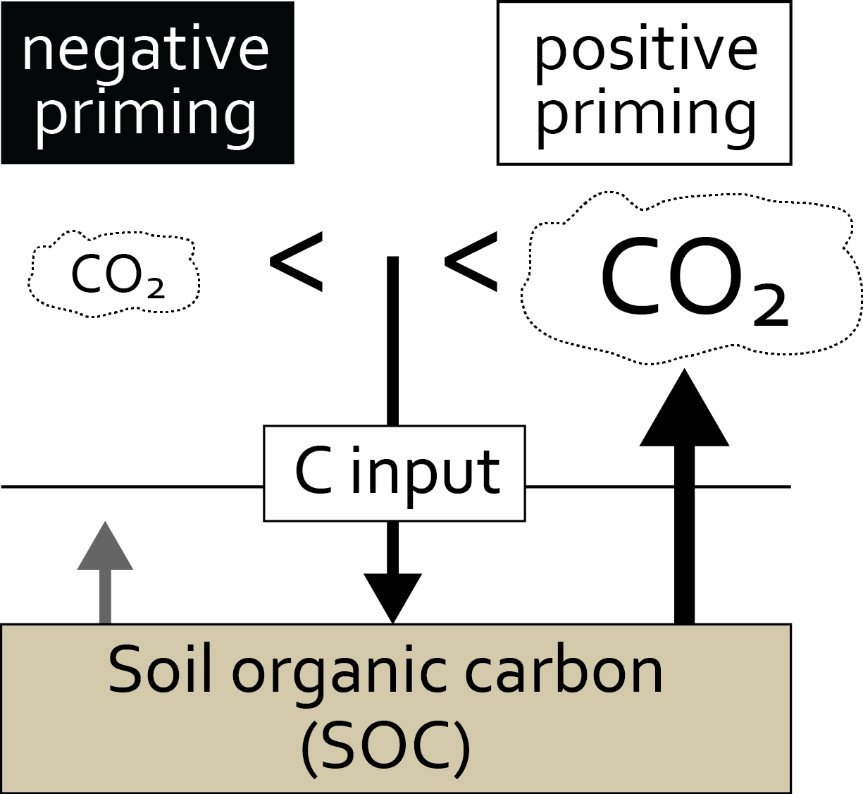 Fig. 1 - An illustration of the soil priming effect.